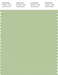 PANTONE SMART 14-0115X Color Swatch Card, Foam Green