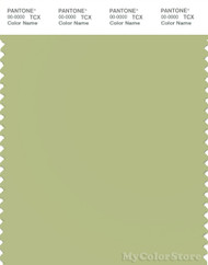 PANTONE SMART 14-0223X Color Swatch Card, Nile