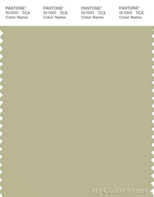 PANTONE SMART 14-0418X Color Swatch Card, Bog