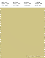 PANTONE SMART 14-0627X Color Swatch Card, Shadow Green