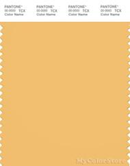 PANTONE SMART 14-0847X Color Swatch Card, Buff Yellow
