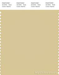 PANTONE SMART 14-0925X Color Swatch Card, Parsnip