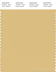PANTONE SMART 14-0935X Color Swatch Card, Jojoba