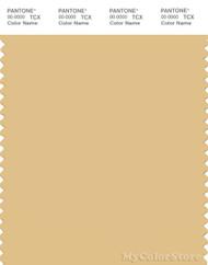 PANTONE SMART 14-0936X Color Swatch Card, Sahara Sun