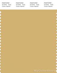 PANTONE SMART 14-1031X Color Swatch Card, Rattan