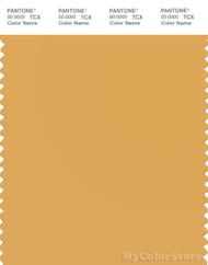 PANTONE SMART 14-1041X Color Swatch Card, Golden Apricot