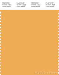 PANTONE SMART 14-1045X Color Swatch Card, Amber