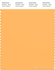 PANTONE SMART 14-1051X Color Swatch Card, Warm Apricot