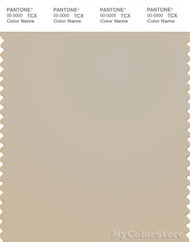 PANTONE SMART 14-1106X Color Swatch Card, Peyote