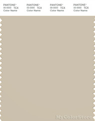 PANTONE SMART 14-1107X Color Swatch Card, Oyster Gray