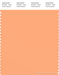 PANTONE SMART 14-1135X Color Swatch Card, Salmon Buff
