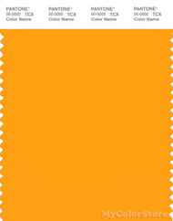 PANTONE SMART 14-1159X Color Swatch Card, Zinnia