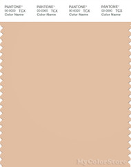 PANTONE SMART 14-1217X Color Swatch Card, Amberlight