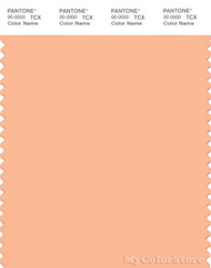 PANTONE SMART 14-1225X Color Swatch Card, Beach Sand