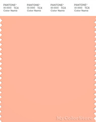 PANTONE SMART 14-1228X Color Swatch Card, Peach Nectar