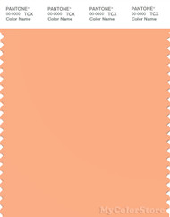 PANTONE SMART 14-1230X Color Swatch Card, Apricot Wash