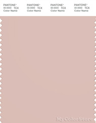 PANTONE SMART 14-1309X Color Swatch Card, Peach Whip