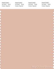 PANTONE SMART 14-1314X Color Swatch Card, Spanish Villa