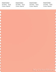 PANTONE SMART 14-1323X Color Swatch Card, Salmon