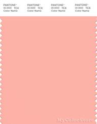 PANTONE SMART 14-1324X Color Swatch Card, Peach Bud