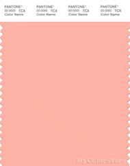 PANTONE SMART 14-1419X Color Swatch Card, Peach Pearl