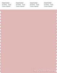 PANTONE SMART 14-1907X Color Swatch Card, Peach Skin