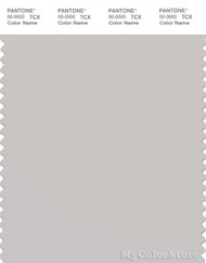 PANTONE SMART 14-4002X Color Swatch Card, Wind Chime