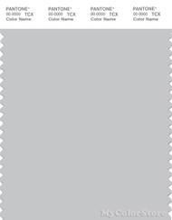 PANTONE SMART 14-4102X Color Swatch Card, Glacier Gray