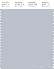 PANTONE SMART 14-4106X Color Swatch Card, Gray Dawn