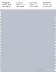 PANTONE SMART 14-4106X Color Swatch Card, Gray Dawn