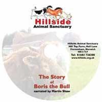 The Story of Boris the Bull
