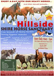 Hillside Open Day Posters (free of charge)