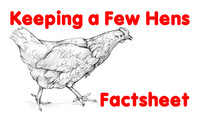 Keeping a Few Hens Factsheet (free of charge)
