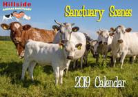2019 Hillside Calendar