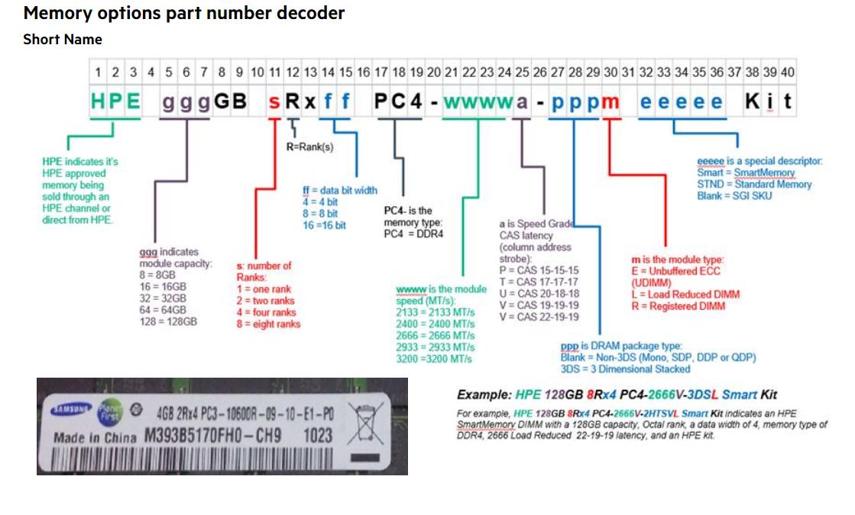 Memory Rank Decoder