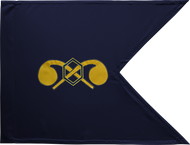 Chemical Corps Guidon Framed 24x31 (Regulation)