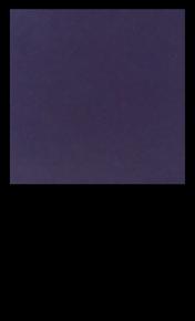 Grape G339