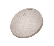 Large Coral Frag Disk (25 pack) for coral fragging and propagation