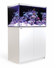 Red Sea Reefer 250 White 54 Gallon Aquarium Tank Setup