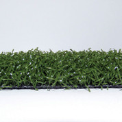 Action 35 Diamondturf 15'W x 55'L