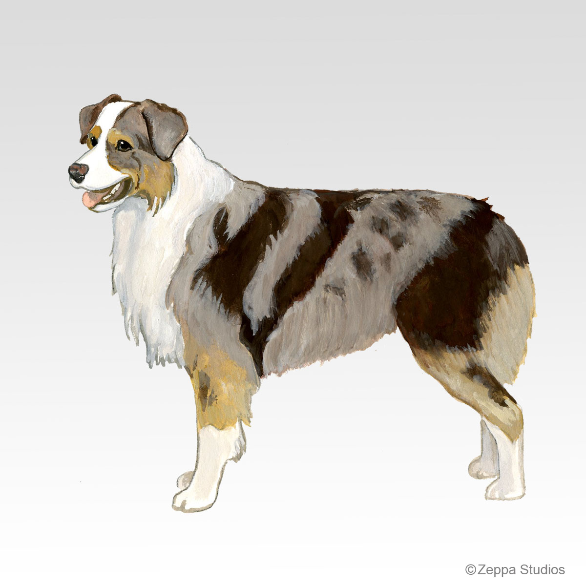 Red Merle Aussie Shepherd, new Fur Children breed design from Zeppa Studios