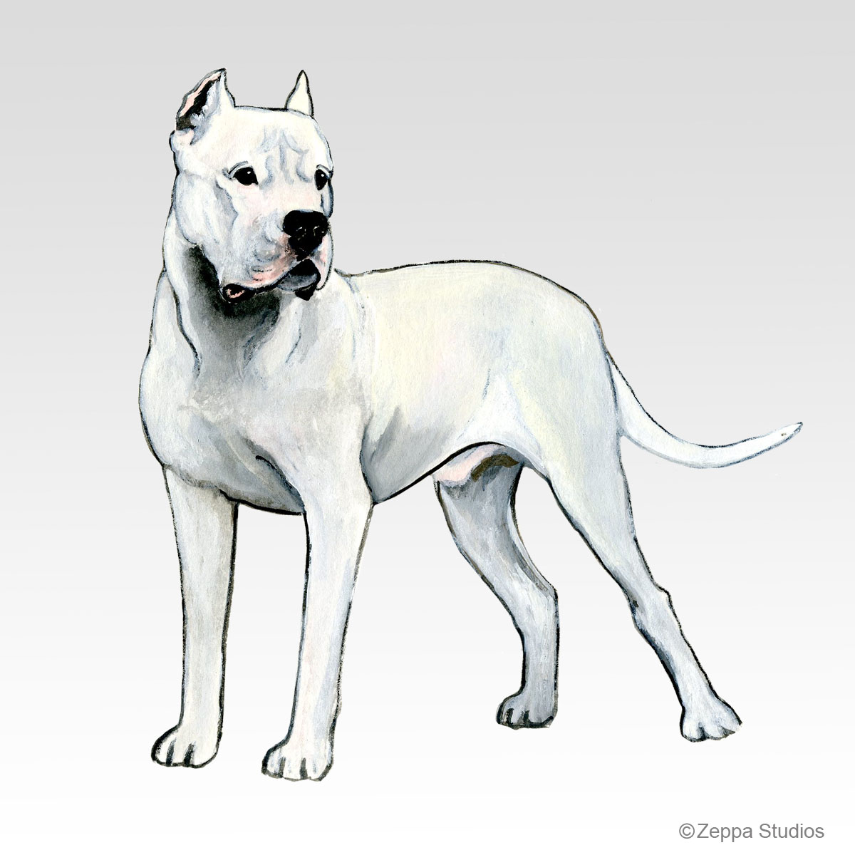 Dogo Argentino, new Fur Children design from Zeppa Studios