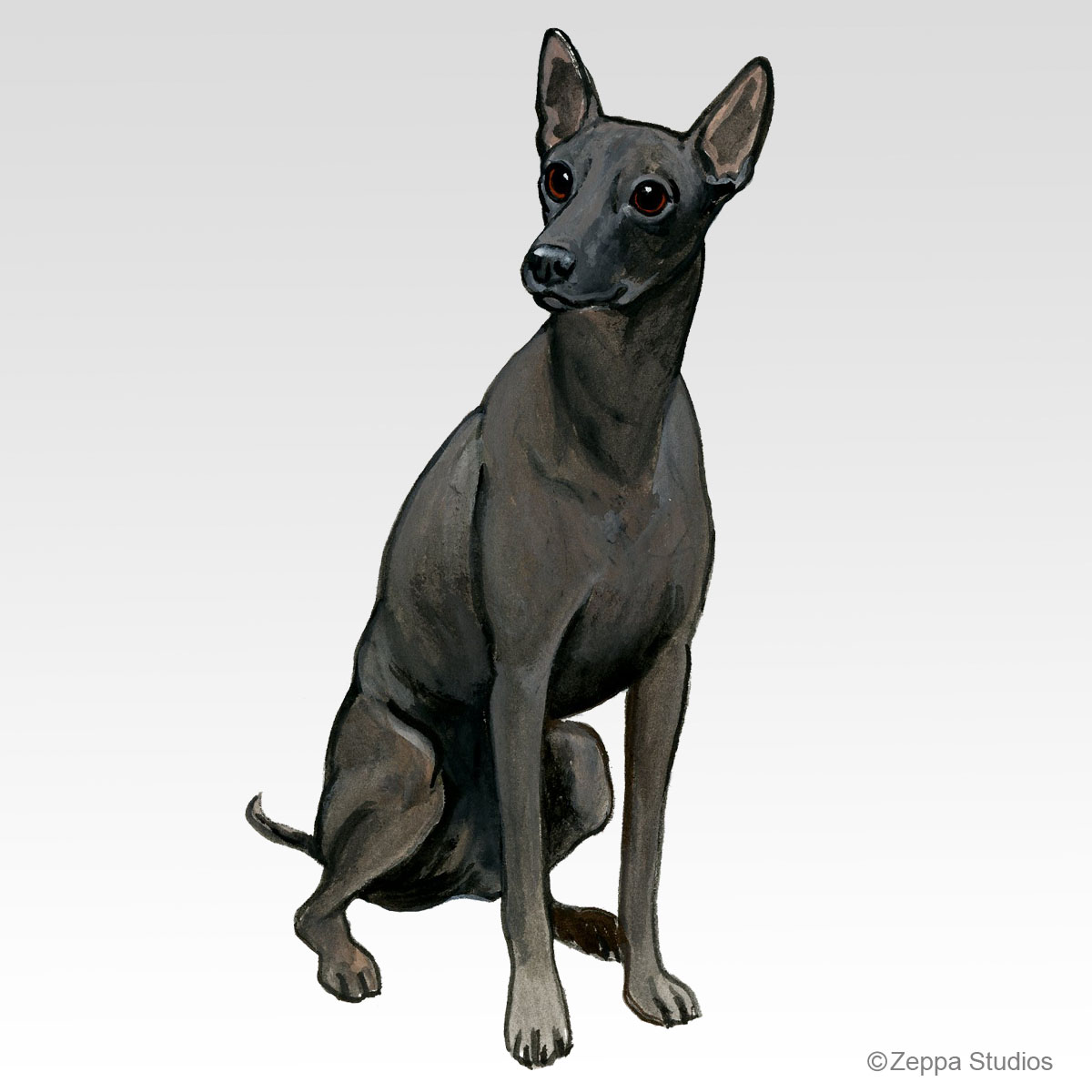 Xoloitzcuintli, new Fur Children design from Zeppa Studios