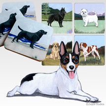 Rat Terrier Scenic Coasters