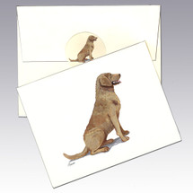 Chesapeake Bay Retriever Note Cards
