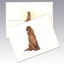 Irish Setter Note Cards