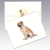 Yellow Lab Note Cards