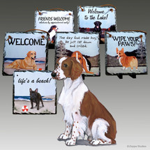 Welsh Springer Slate Signs