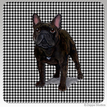 French Bulldog Houndzstooth Coasters