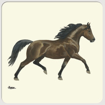 Morgan Horse Beverage Coasters